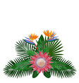 Tropical bouquet composition vector image