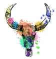 Cow watercolor skull- hand drawn vector image vector image