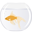 goldfish in bowl with bubbles vector image