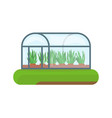 greenhouse and agriculture vector image