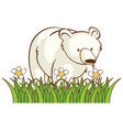 isolated picture polar bear in garden