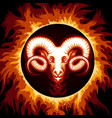 zodiac sign of aries in fire circle vector image vector image
