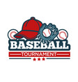 baseball tournament icon template player vector image