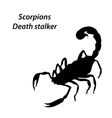 Deathstalker vector image vector image