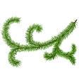 Decoration fir branch for Christmas wreath Green vector image vector image