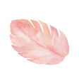 isolated pastel pink leaf on white background vector image vector image