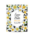 wedding invitation template with plumeria flowers vector image vector image