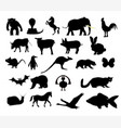 animals collection silhouette vector image