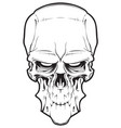 decrepit evil cartoon skull vector image vector image