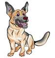 german shepherd breed vector image vector image