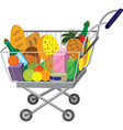 Grocery store shopping cart with food items vector image vector image