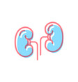 kidneys icon in modern colors on white vector image vector image