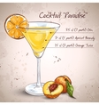 paradise alcoholic cocktail vector image