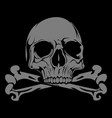 pirate-themed design human skull and crossbones vector image