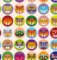 Seamless background with muzzle of cats vector image
