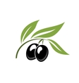 Two ripe black cartoon olives vector image