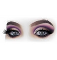 woman eyes fashion makeup vector image