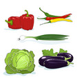fresh gardening vegetables isolated on white vector image vector image