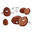 Funny cartoon isolated brown walnuts vector image