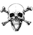 graphic human skull with crossed bones vector image vector image