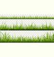green grass borders summer meadow panorama vector image