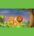scene with tiger family in park vector image vector image