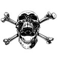 graphic realistic human skull with crossed bones vector image