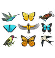 collection of colorful butterfly insects and birds vector image