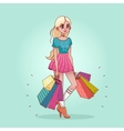 Girl with shopping bags from the store vector image vector image