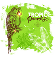 Hand drawn sketch tropical paradise plants and vector image