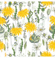 seamless pattern with daffodils and herbs endless vector image vector image