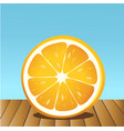 summer orange fruit vector image vector image