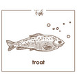 trout sketch fish icon of salmon vector image