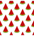 water-melon on white seamless pattern vector image