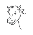 smiling cow vector image