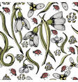 colorful floral seamless snowdrops pattern vector image