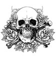 graphic human skull with crossed bones and roses vector image vector image