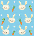 pattern cony vector image