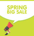 spring sale season announcement megaphone vector image vector image