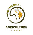 agriculture company logo design vector image