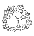 Autumnal harvest vector image vector image