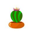 cartoon green house plants in pots set leaf vector image