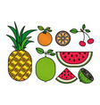 colorful silhouette with set of tropical fruits vector image