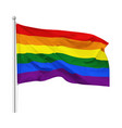flag rainbow flag vector image