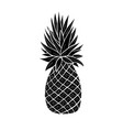 pineapple silhouette tropical fruit doodle vector image