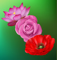 realistic flower set vector image