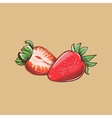 Strawberry in vintage style Colored vector image vector image