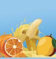 tropical juice mix vector image