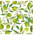 floral lime seamless pattern citrus fruits vector image vector image