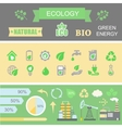 Green energy and ecology Infographic set elements vector image vector image